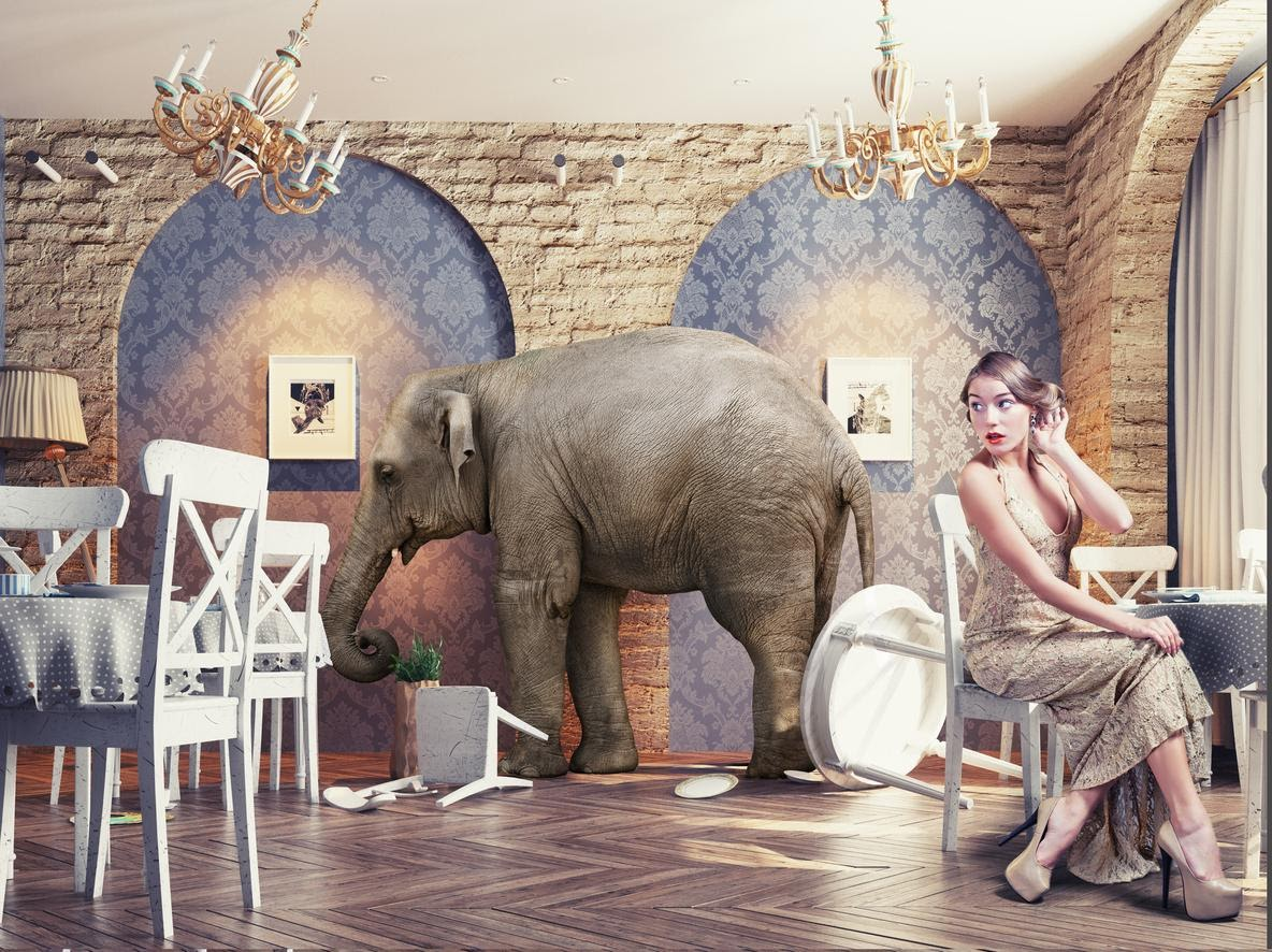 an elephant in a flapper style room with a lady looking at it in shock